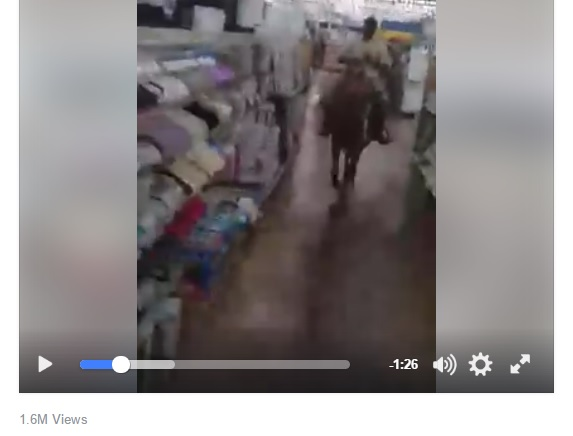 Men Ride Horses Through Walmart