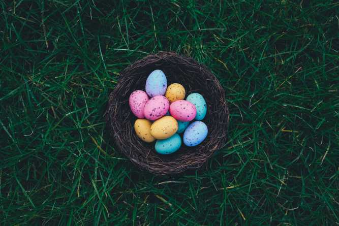 Northwest Houston Easter Egg Hunt
